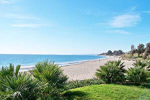Costa del Sol's Estepona geselecteerd om te worden opgenomen in de nieuwe editie van Monopoly Spanje